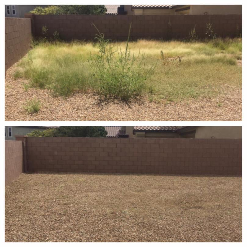 weeds_az_sahuarita_greenvalley_landscaping
